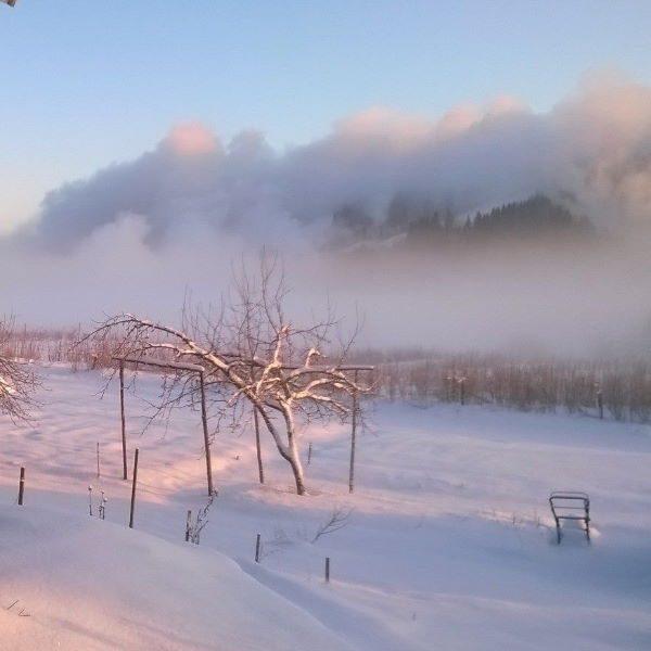 Himoksen lumetus